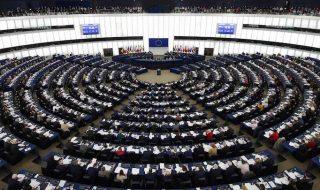 elezioni europee programmi