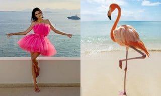 Flamingo pose Instagram