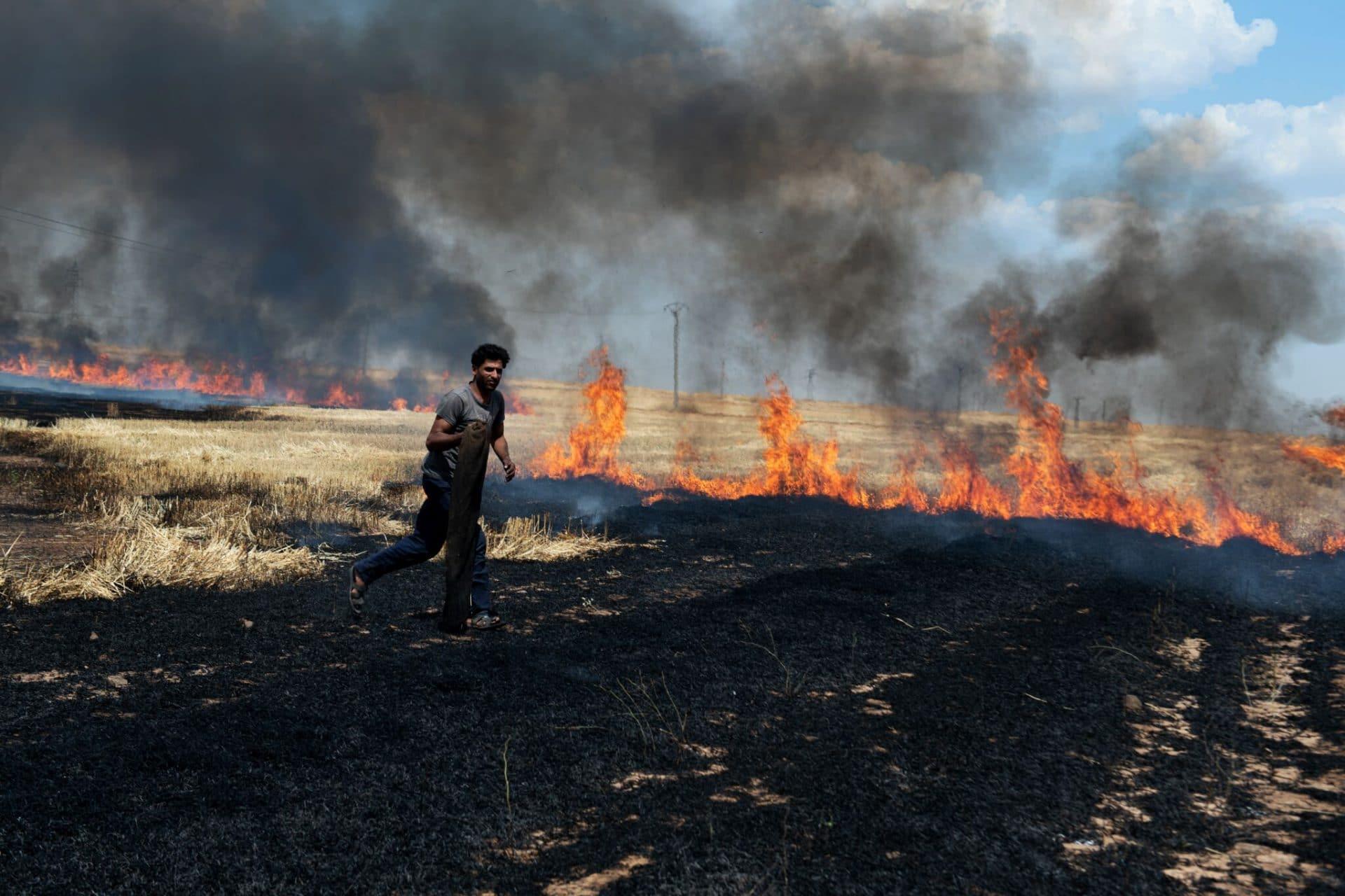 Siria Rojava incendi