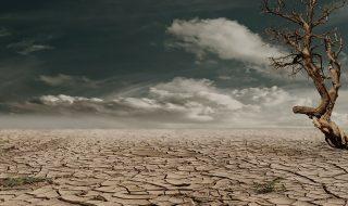 cambiamento climatico apartheid