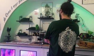 Cannabis light commercianti