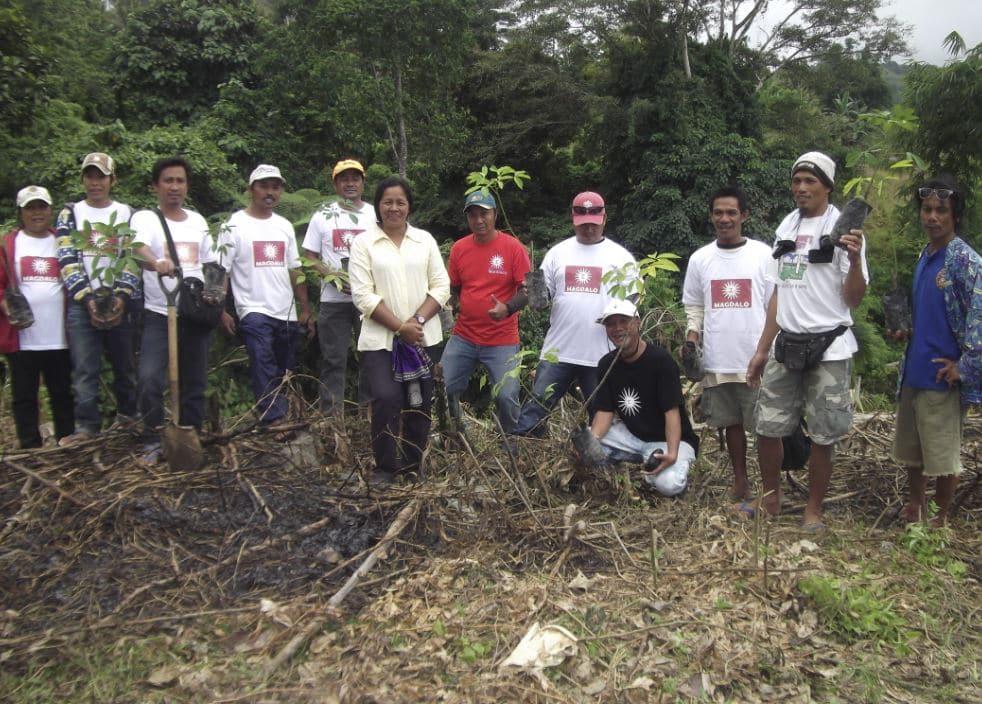 Laurea alberi filippine