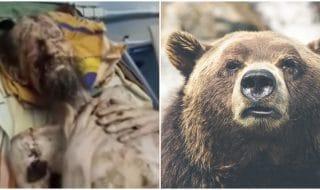Uomo mummia orso