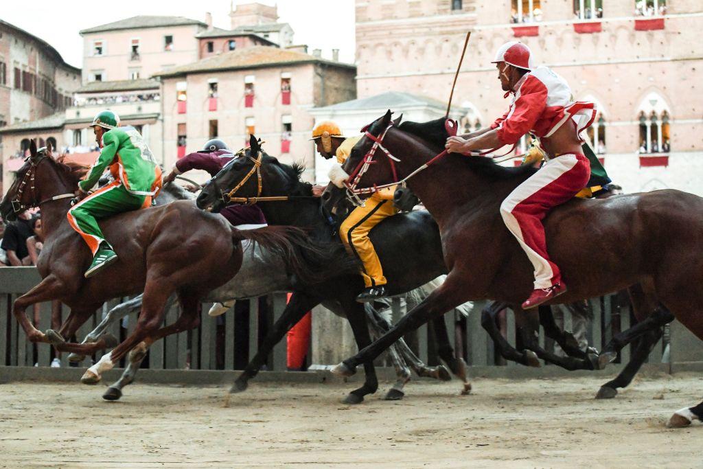 Palio di Siena 2019 incidente cavallo
