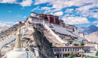 lhasa estate