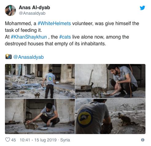 morto Anas al-Dyab