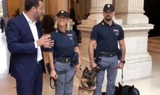 salvini critiche cani centro migranti