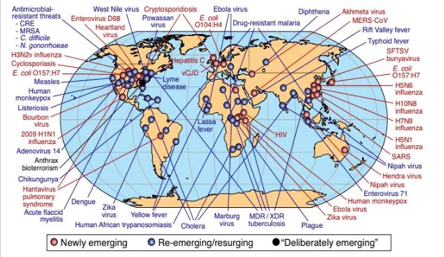 pandemia-influenza-potrebbe-causare-80-milioni-morti