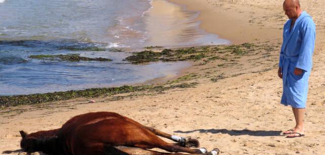 montalbano la pista di sabbia