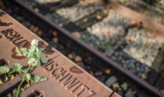 predappio Auschwitz