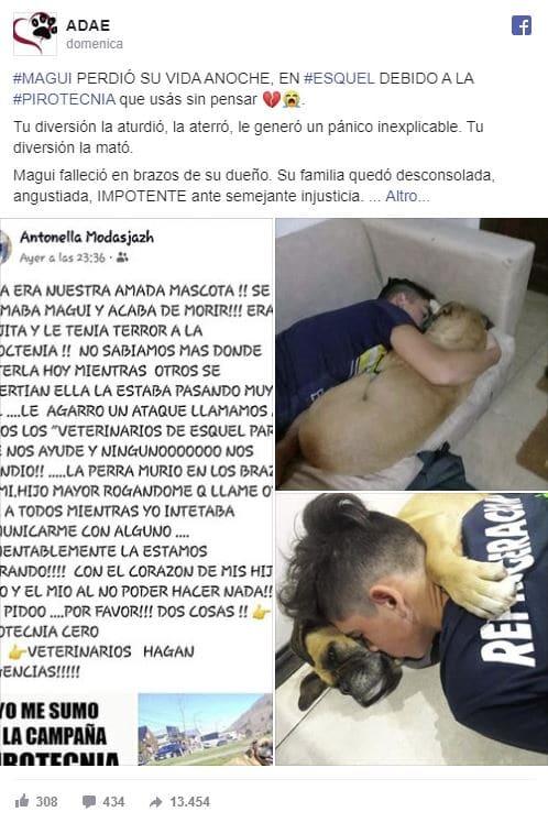cane morto argentina