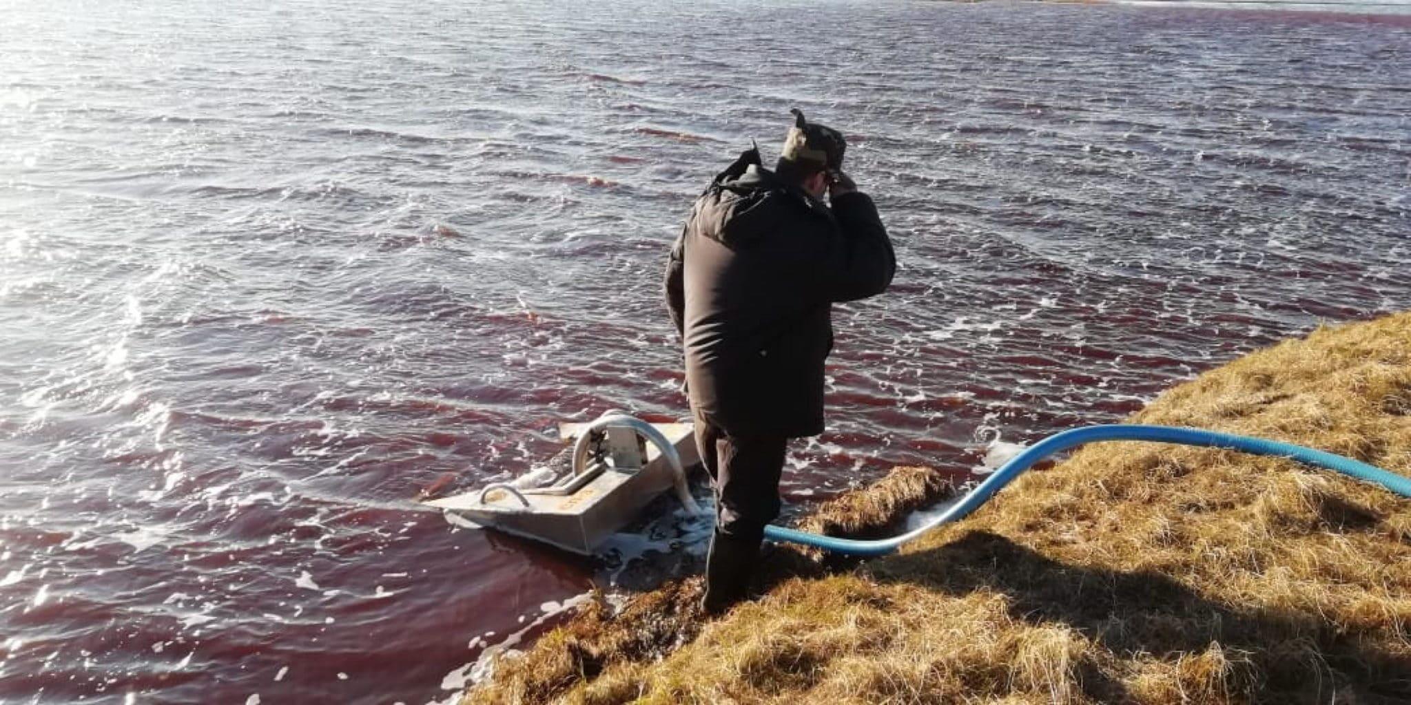 Disastro ambientale in Russia: tonnellate di gasolio di una