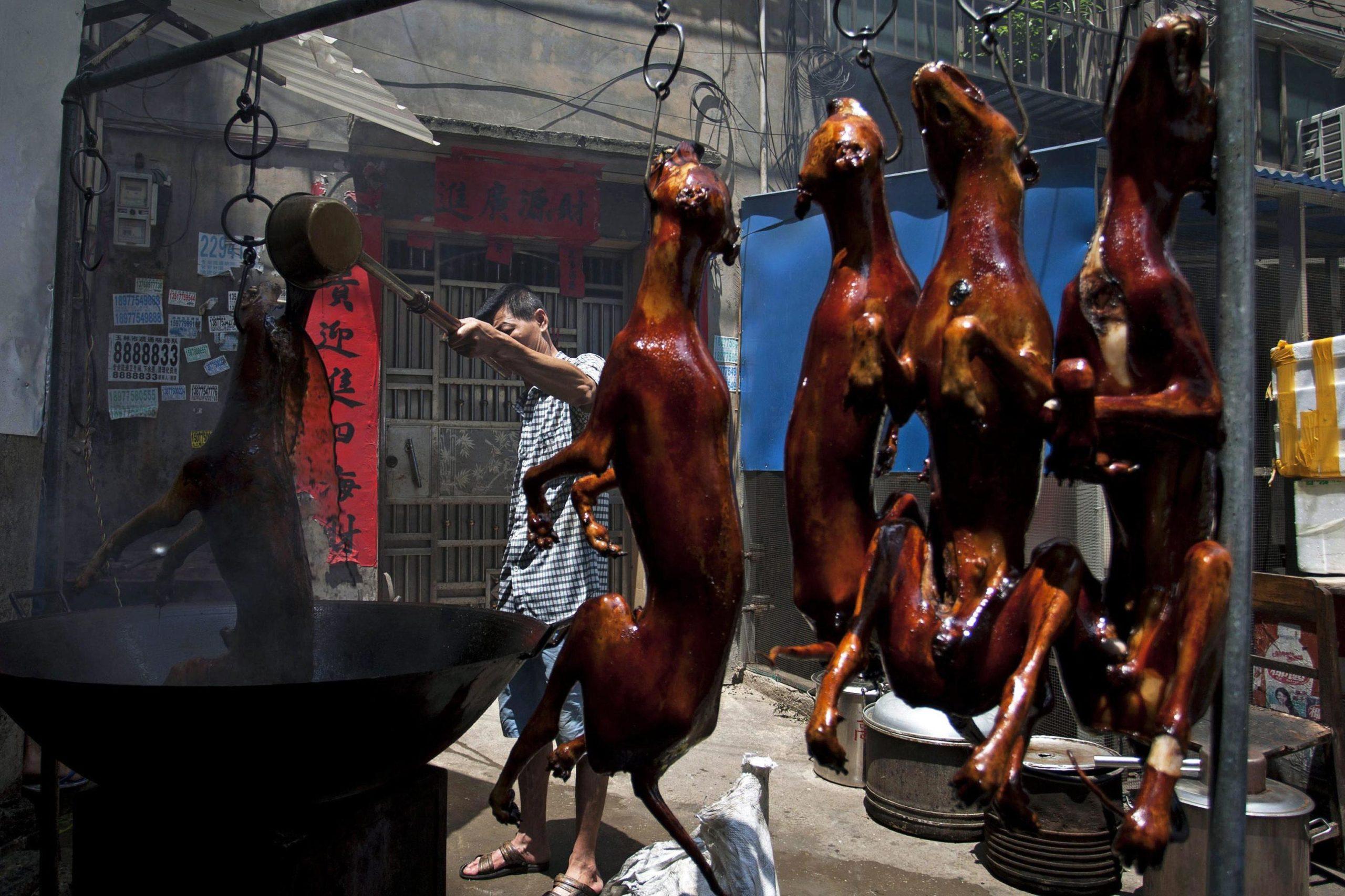 festival di yulin